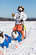 Musher Ralph Johannessen competing in the 45rd Iditarod Trail Sled Dog Race on the Chena River after leaving the restart in Fairbanks in Interior Alaska.  Afternoon. Winter.