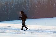 Skilangläufer, Schnee, Winter, Harz, Niedersachsen, Deutschland | cross country skiing, forest,  snow, winter, Harz, Lower Saxony, Germany