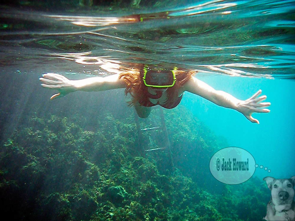 12/06/2005 - West End, Negril, Jamaica - RockHouse Hotel - Snorkel travel swim water underwater swimmer snorkeler feature adventure explore - A snorkeler explores the waters of Pristine Cove off the RockHouse hotel in Negril Jamaica...Jack Howard Photograph