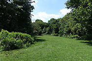 Maintenance Meadow in Central Park