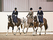 Gipping Valley Riding Club - Side Saddle demonstration
