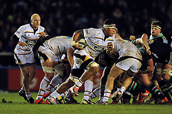 Nathan Hughes of Wasps goes on the attack - Photo mandatory by-line: Patrick Khachfe/JMP - Mobile: 07966 386802 17/01/2015 - SPORT - RUGBY UNION - London - The Twickenham Stoop - Harlequins v Wasps - European Rugby Champions Cup