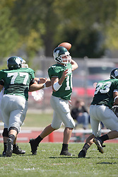 15 September 2007:  Kraig Ladd steps up to pass. The Titans stood toe to toe with the 25th ranked Lions through the first half but ended the game on the losing end of a 25-15 score at Wilder Field on the campus of Illinois Wesleyan University in Bloomington Illinois.