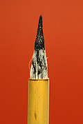 close up of paint covered calligraphy brush