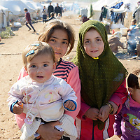 Displaced Syrians (2013)