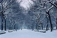 Central Park, New York City, New York, Manhattan, Poets Alley, Snow