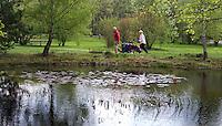 HAVELTE - Vijver bij Hole 8 van Golf Club Havelte. COPYRIGHT KOEN SUYK