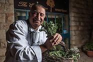 Israel - Jerusalem: Eucalyptus