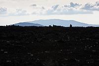 Bjallahraun lava on route Landmannaleið. Mount Sauðafell and Búrfell in background. Interior of Iceland.