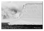 Giant iceberg and a lonely Petrel in the Antarctic Sound, northern Antarctic Peninsula.  Nikon D850, 70-200mm @ 150mm, f11, EV+0.33, 1/500sec, ISO160, Aperture priority