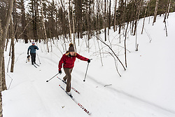 A man and woman cross country skiing with their dog on a forest trail in Epping, New Hampshire.