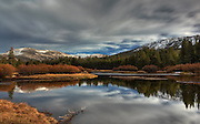 Storm clouds in reflecting pond, Tuolumne Meadows, Yosemite National Park
