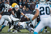 Oakland Raiders quarterback Derek Carr (4) scrambles against the Carolina Panthers defense at Oakland Coliseum in Oakland, Calif., on November 27, 2016. (Stan Olszewski/Special to S.F. Examiner)