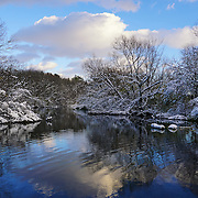 &quot;Glorious Winter Day&quot; <br /> <br /> A wonderful winter day with snow laden trees, bare branches, beautiful clouds in the sky, and reflections on the water!