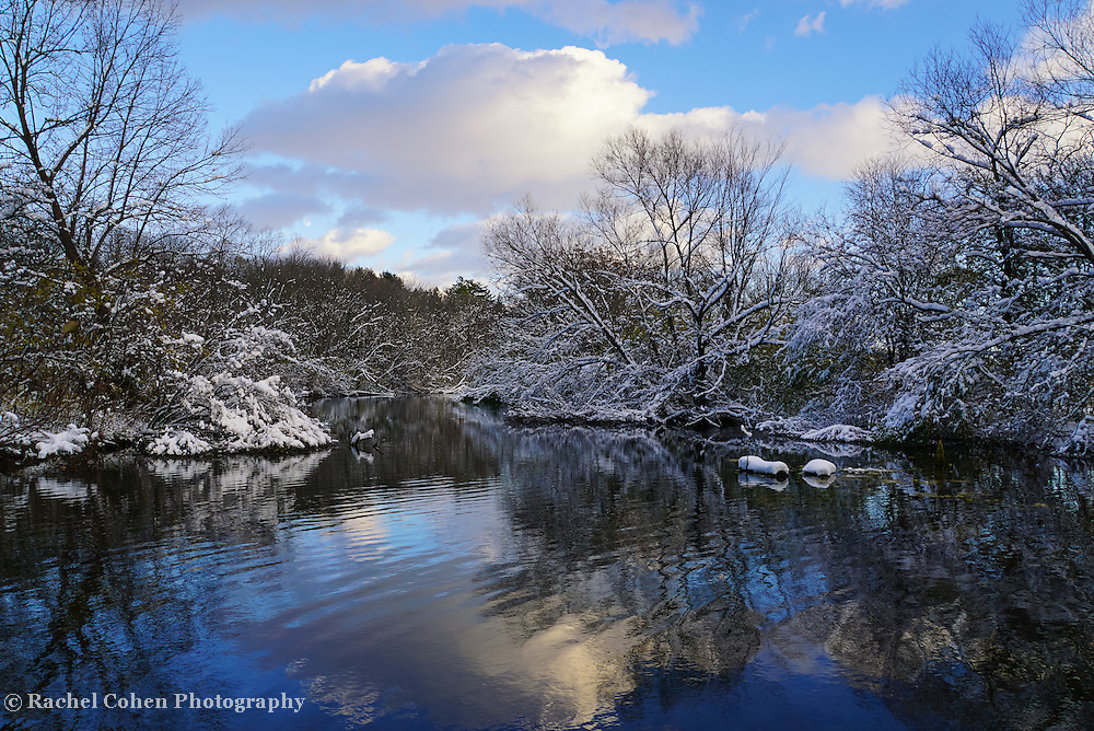 &quot;Glorious Winter Day&quot; <br />