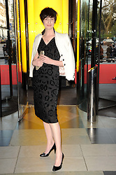 ERIN O'CONNOR at the opening of the Victoria & Albert Museum's latest exhibition 'Grace Kelly: Style Icon' opened by His Serene Highness Prince Albert of Monaco at the V&A on 15th April 2010.