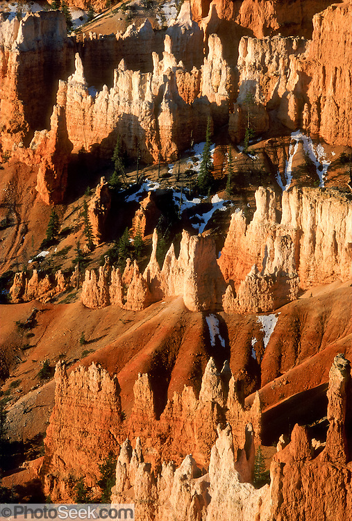 """Regimental """"hoodoos"""" are eroded pinnacles of soft rock in Bryce Canyon National Park, Utah, USA. Published in Nature, the International Weekly Journal of Science, 17 January 2008 on the cover of the enclosed supplement """"Year of Planet Earth,"""" pages 257-304."""