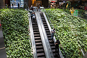 General Views showing interior of Central Park Mall, One Central Park,which is built around Chippendale Green, Sydney. The building itself was designed by award-winning Parisian architect Jean Nouvel and the vertical gardens designed by the artist and botanist Patrick Blanc, Chippendale, Sydney, Australia. The residential building has been named best tall building in the world in June 2014. A massive silver heliostat hangs from One Central Park to redirect light to the ground below. The unique steel heliostat is specifically designed to reflect sunlight to another area. Research shows green infrastructure such as garden walls can play a big role in cooling the city.