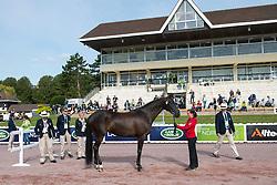 Steffen Zeibig, (GER), Feel Good 4 - Horse Inspection Para Dressage - Alltech FEI World Equestrian Games™ 2014 - Normandy, France.<br /> © Hippo Foto Team - Jon Stroud<br /> 25/06/14