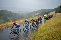 The peloton climbs Box Hill. The Prudential RideLondon Classic. Sunday 29th July 2018<br /> <br /> Photo: Anthony Upton for Prudential RideLondon<br /> <br /> Prudential RideLondon is the world's greatest festival of cycling, involving 100,000+ cyclists - from Olympic champions to a free family fun ride - riding in events over closed roads in London and Surrey over the weekend of 28th and 29th July 2018<br /> <br /> See www.PrudentialRideLondon.co.uk for more.<br /> <br /> For further information: media@londonmarathonevents.co.uk