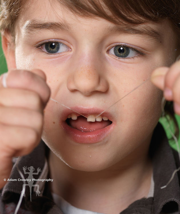 Portrait of boy (7 years old) flossing teeth, with missing front tooth.
