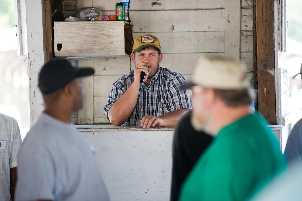 Laurel Farmers Market Produce Auction
