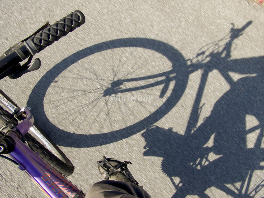 shadow of moving bicycle on asphalt
