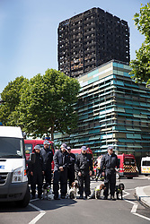 © Licensed to London News Pictures. 19/06/2017. London, UK. Members of a police dog team stand for a minutes silence for the victims of the Grenfell tower block fire. The blaze engulfed the 27-storey building killing dozens - with 34 people still in hospital, many of whom are in critical condition. Photo credit: Peter Macdiarmid/LNP