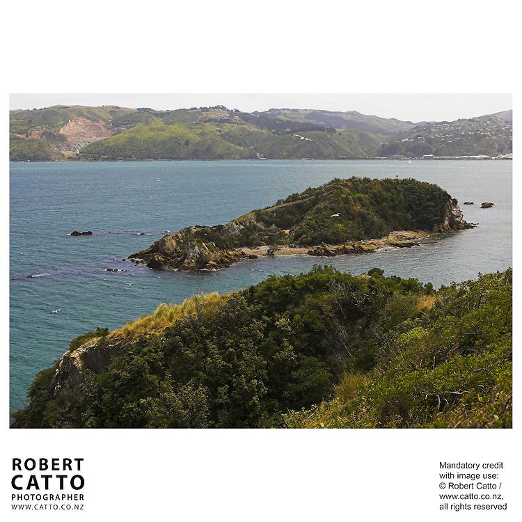 Mokopuna Island at Somes Island, Wellington, New Zealand.<br />