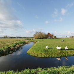 Schagen, Noord Holland, Netherlands