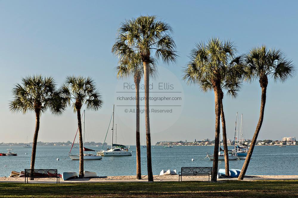 View of Sarasota Bay from Bayfront Park Sarasota, Florida