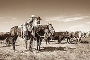 Ranch Photography