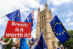 © Licensed to London News Pictures. 20/06/2018. London, UK. Anti-Brexit protesters wave European Union flags opposite Parliament as MPs prepare to debate the EU Withdrawal Bill. Photo credit: Rob Pinney/LNP