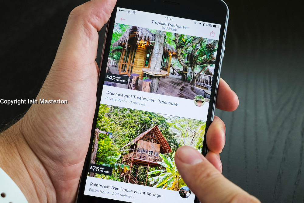 Airbnb holiday room booking app showing tree houses for rent on an iPhone 6 plus smart phone
