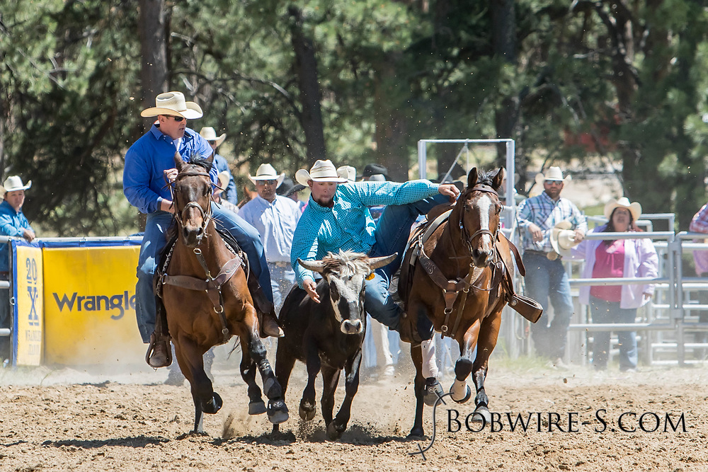 Steer wrestler Kalane Anders makes his run in the first performance of the Elizabeth Stampede on Saturday, June 2, 2018.