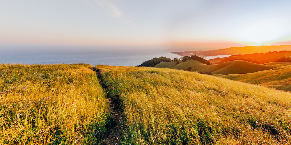 Mt. Tamalpais State Park, Mill Valley, California, Marin County
