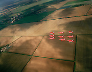 Seen from another aircraft, the Dimanod Nine formation by the 'Red Arrows', Britain's Royal Air Force aerobatic team.