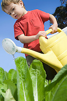 2 Year Old in vegetable garden with watering can