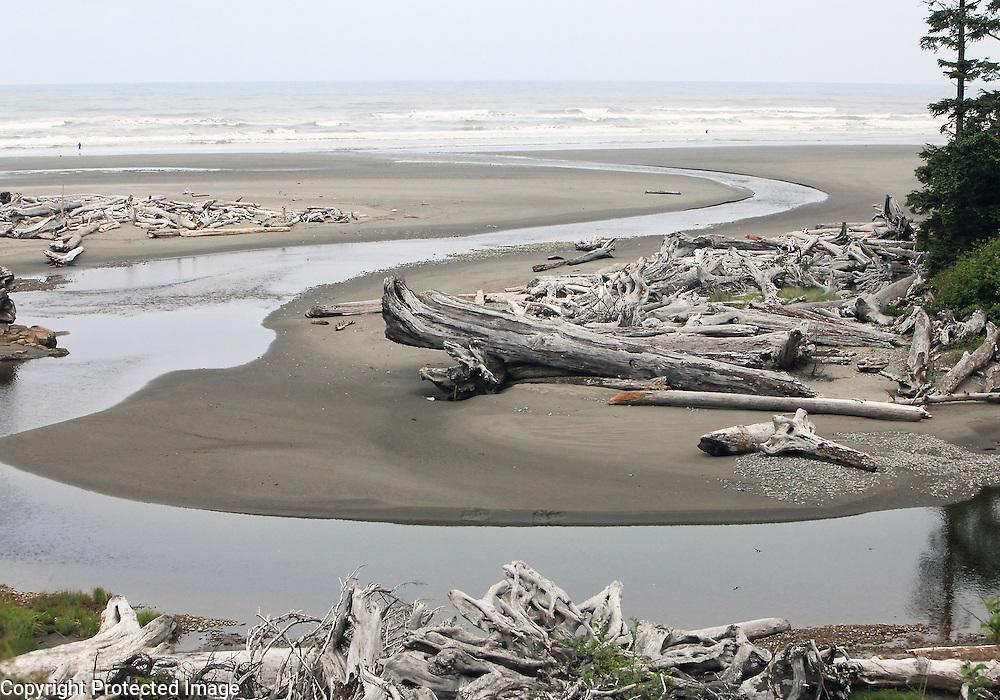 Driftwood, American Northwest