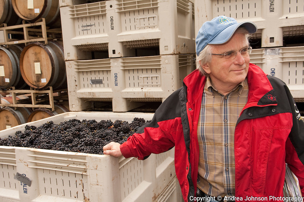 Harry Peterson-Nedry, the founder, winemaker, and managing partner of Chehalem, one of Oregon's premier wineries, next to a bin of freshly picked pinot noir grapes