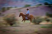 New Mexico Ranch Life