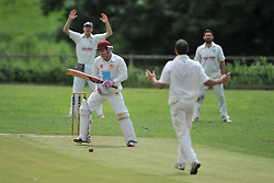RUSHTON CALL FOR AN LBW ON TOM HAFIL  BATTING OLD NORTHAMPTONIANS, RUSHTON CRICKET CLUB v OLD NORTHAMPTONIANS CC, Station Road Rushton Saturday 25th June 2016