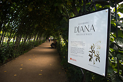 August 29, 2017 - London, United Kingdom - View of the White Garden, created to celebrate the life of Diana, the Princess of Wales, at Kensington Palace, London on August 29, 2017. In Spring and Summer 2017, the historic Sunken Garden at Kensington Palace will be temporarily transformed into a White Garden. It is created with thousands of white flowers and foliage to mark the 20th anniversary of the death of Diana. (Credit Image: © Alberto Pezzali/NurPhoto via ZUMA Press)