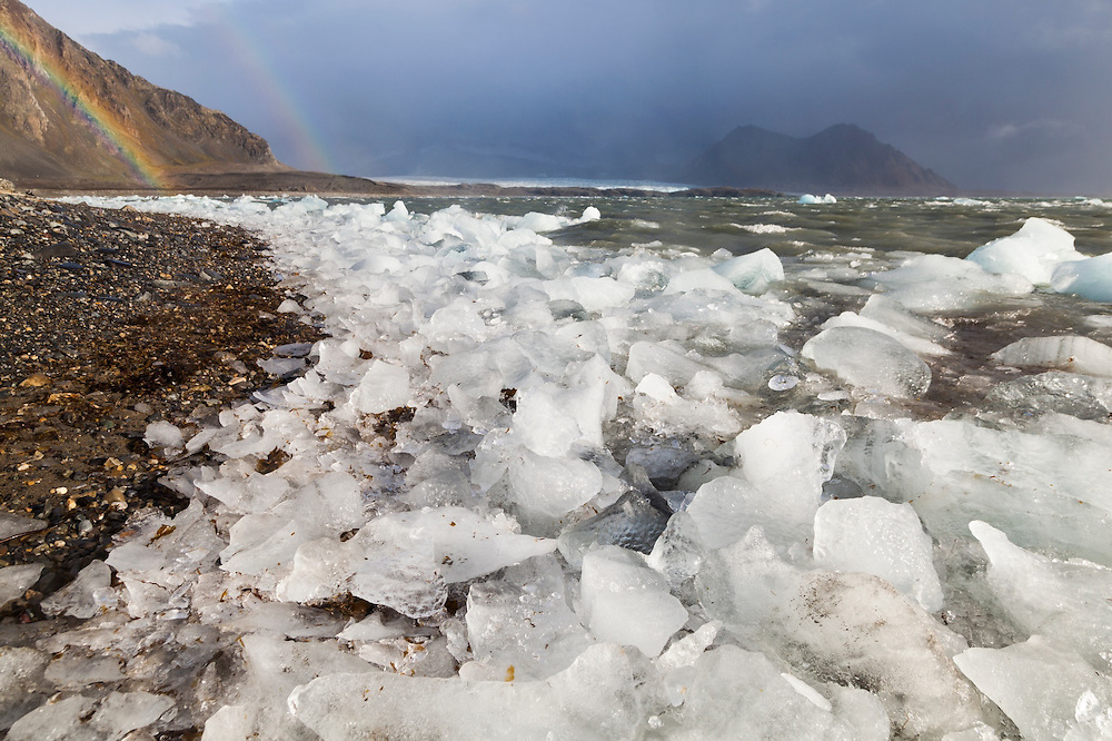 Ice, calved by Hansbreen (visible in the distance), on the coast at the Polish Polar Station in Hornsund, Svalbard.