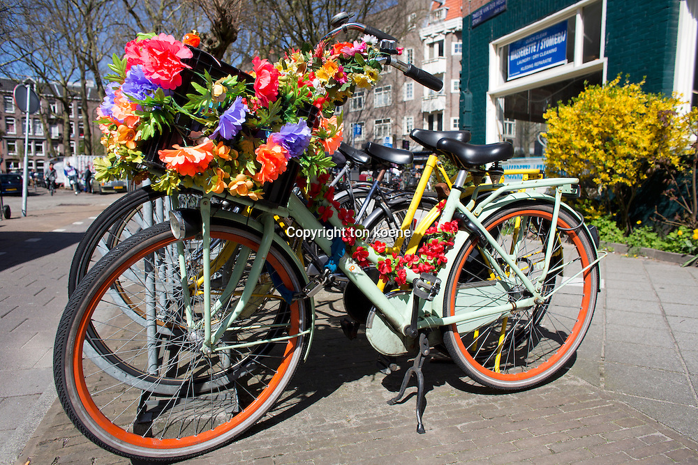 bycicle in Holland