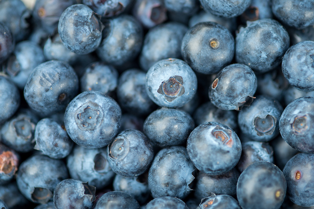 Blueberries for sale at a farmers market