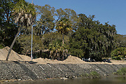 Living Shoreline of Oyster bed<br /> Little St Simon's Island, Barrier Islands, Georgia<br /> USA<br /> Using oyster shells to attract new oyster growth and protect the shoreline