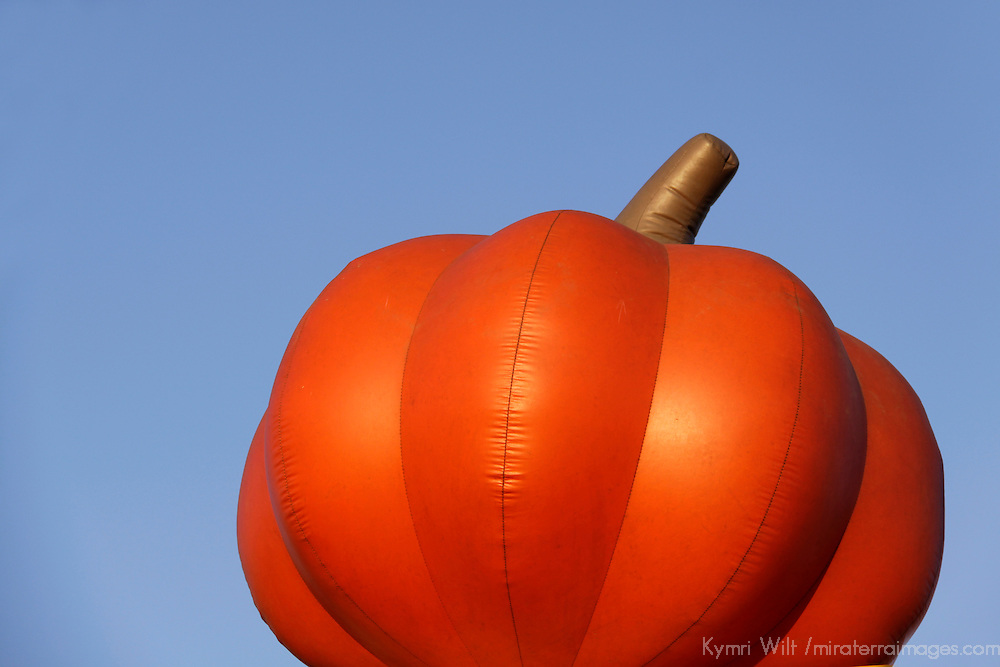 USA, California, San Diego. An inflated pumpkin against the sky.