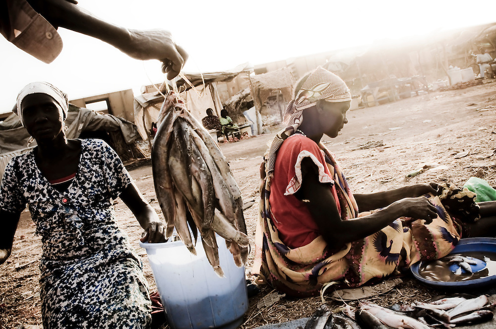 Women clean and sell fish in the Southern Sudanese town of Aweil. Sudan recently voted on whether or not to remain with the North or to set out alone as the world's newest nation. (© William B. Plowman)