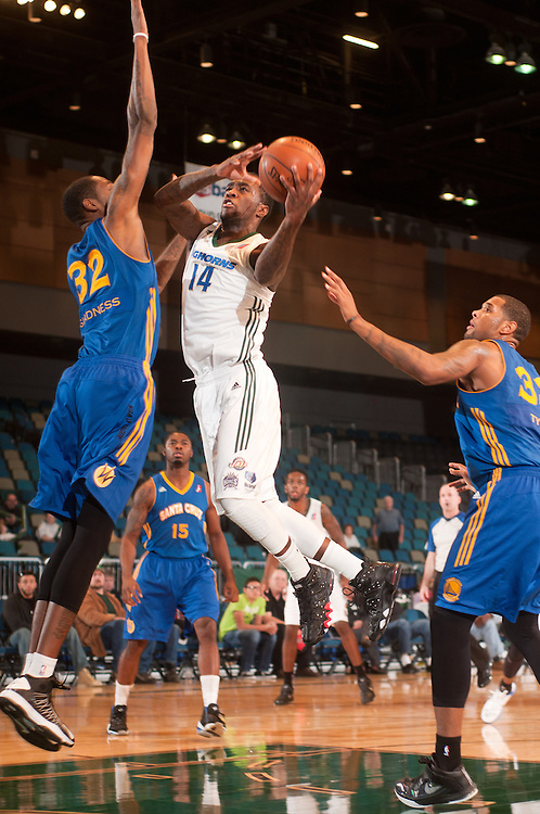 RENO, NV - DECEMBER 2:  Tony Wroten #14 of the Reno Bighorns drives to the basket into defender Mickell Gladness #32 of the Santa Cruz Warriors on December 2, 2012 at the Reno Events Center in Reno, Nev..  NOTE TO USER: User expressly acknowledges and agrees that, by downloading and/or using this photograph, User is consenting to the terms and conditions of the Getty Images License Agreement.  Mandatory Copyright Notice: Copyright 2012 NBAE (Photo by David Calvert/NBAE via Getty Images)*** Local Caption *** Tony Wroten;Mickell Gladness